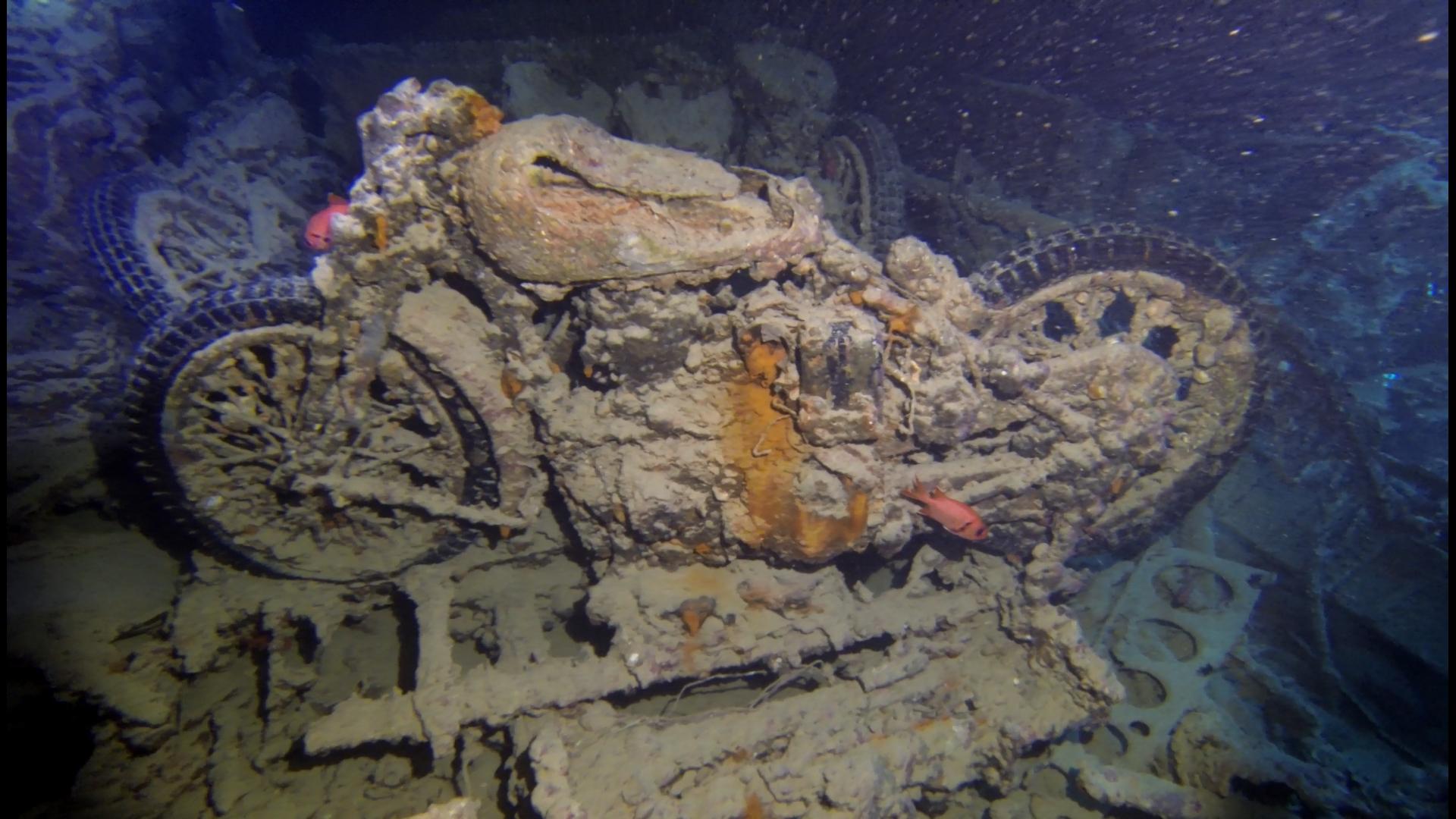 Egypti - Punainenmeri - Hylkysukellus - Thistlegorm